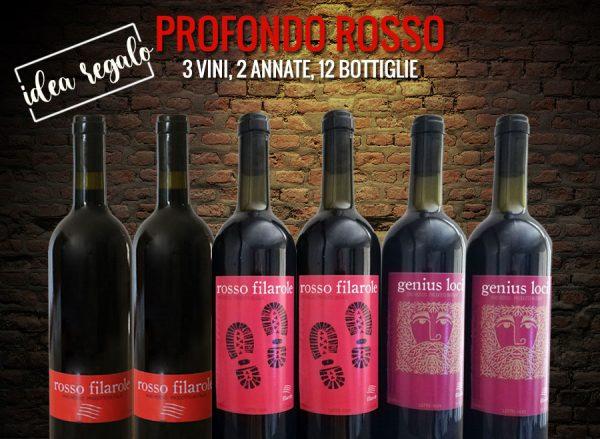 I vini rossi di Filarole