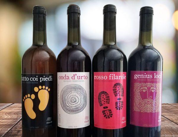 I vini di Filarole, colli piacentini